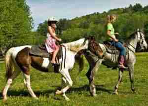 horseback riding in central park new york